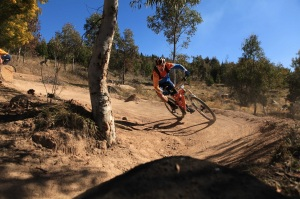 Sebastien Deubel on track at Stromlo Forest Park, one of the venues for the Australian Gravity Enduro Series in 2014. Photo: Deubel Bicycles