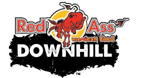 DH-logo2015